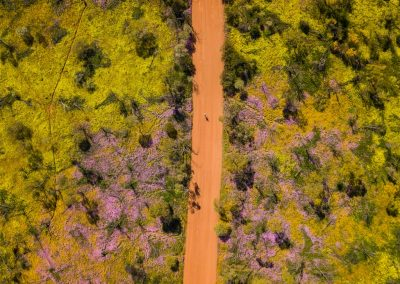 RoadToTheRock-CoalSeam-DJI_0038credit @RobMulally and @GeorgiaRickard